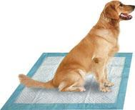 Quality Disposable Pet Pad for sale