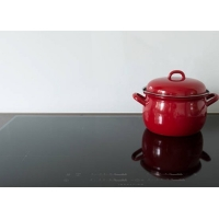 Buy Sensor Control 9.5Kg Double Plate Induction Cooker at wholesale prices