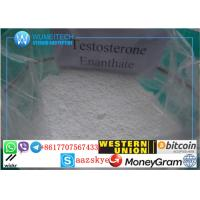 Buy cheap Testosterone Enanthate Powder Primoteston Bulk Steroids  for Asthma and Body-building product