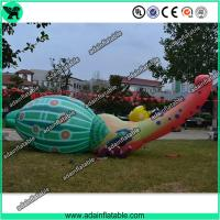 Quality Event Inflatable Animal, Inflatable Bettle, Party Inflatable Cartoon for sale