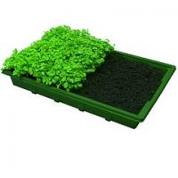 Quality New style seed tray (HX35111) for sale