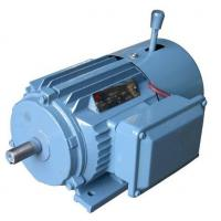 Quality Industrial AC Brake Motor Special Electric Motors for Woods Machine for sale