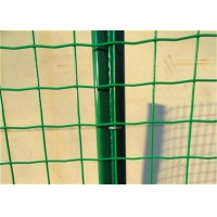 China 50*50mm Dutch Mesh Welded Wire Fence Panels on sale