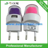 Quality EU US version travel charger home charger 5V 1A wall charger for sale