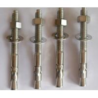 China DIN ANSI JIS Standard Wedge Anchor Bolt 202 304 316 Stainless Steel Fasteners M6-M33 on sale