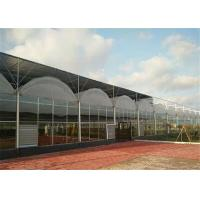 Quality High Durability Plastic Film Greenhouse Great Space Efficient Performance for sale
