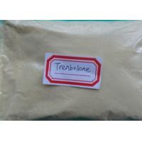 Buy cheap 10161-33-8 Medicine Anabolic Steroids Safe Trenbolone Gestrinone High Purity product