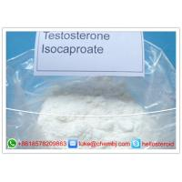 Buy cheap Legal Powder Testosterone Steroids , Testosterone Isocaproate CAS 15262-86-9 product