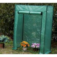Quality 2012 New-style walk-in greenhouse HX54016A for sale