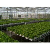 Quality Good Ventilation Greenhouse Rolling Benches , Greenhouse Seedbed System 1.2 - 5.0mm Diameter for sale