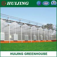 China Plastic Film Green House/Polycarbonate Sheet PC/Hydroponic Venlo Glass/Greenhouse for Farming Agriculture of Vegetables on sale