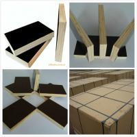 Quality 18/21mm marine plywood & shuttering plywood for sale