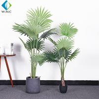 Fan Shaped Leaves Artificial Bonsai Tree , Artificial Palm Trees For Shop Window for sale
