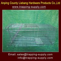 China Live Catch Animal Trap Cage For Rats, Squirrels, Raccoon, Possum,Coycote,Fox,Dog on sale