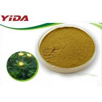 Quality Safety Sex Steroid Hormones No Side Effect Natural Damiana Leaf Powder for sale