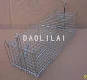 Quality Trap Cage for Rat for sale