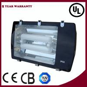 China Induction Flood Lighting on sale