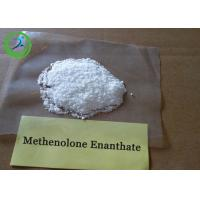 Buy cheap White Raw Hormone Powders Primobolan depot Methenolone Enanthate for steroids from wholesalers