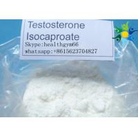 Buy cheap Bodybuilding White Powder Testosterone Anabolic Steroid Test Deca Testosterone Decanoate product
