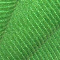 Quality Corduroy Fabric with Good Stretch for sale