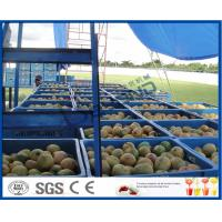 Quality Fresh Pineapple / Mango Juice Processing Plant With Can Packaging Machine for sale