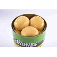 Quality Light Yellow Canning Marinated Mushrooms , Whole Button Mushrooms In Jars for sale