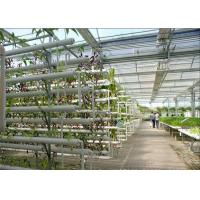Quality Plastic Film Low Cost Greenhouse , Hydroponic Plastic Greenhouse Accessible To Remove for sale