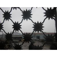 Quality Stainless steel Anti-Climb SUN-BARB Fence, High Security Prison Fence, Thorn Spike Fence for sale