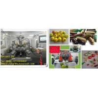Buy cheap Professional Championship Paintball Automatic Encapsulation Machine For CS Game from wholesalers