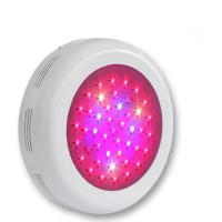 China Horticulture Red Blue Spectrum LED Grow Light For Flower Exhibition , Bonsai , Garden on sale