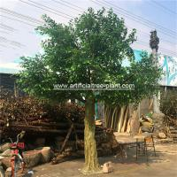 Large Fiberglass Material Artificial Ficus Tree Faux Banyan Plant For Outdoor for sale