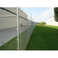 Quality ASTM F668 standard PVC coated chain link fence with extruded and bonded coating, green col for sale