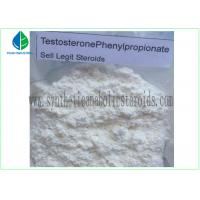 Quality 99% Purity Raw Hormone Powders Steroids Testosterone Phenylpropionate for Muscle Mass for sale
