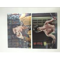 Quality Multicolor Printed 3D Lenticular Postcards , Personalised 3d animated pictures Offset UV Prining for sale