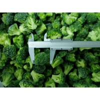 Quality Frozen IQF Broccoli for sale