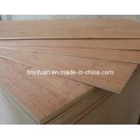 Buy cheap Commercial Plywood for Packing/ High Quality Commercial Plywood for Packaging from wholesalers