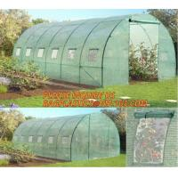 Quality Polycarbonate Plastic Sheet Agricultural Mini Garden Green House Walk In Dome for sale