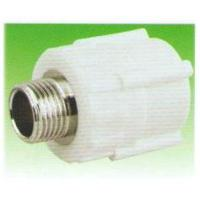 Quality Male Thread Coupling/PPR (ZB20*1/2′mm-75*2 1/2′mm) for sale