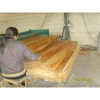 Natural Birch Rotary Cut Veneer With 0.2 mm - 0.6 mm Thickness