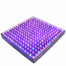 Full Spectrum SMD Indoor LED Grow Lights 50 Watt For Breeding / Farmland , 315x310mm