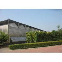 Quality Smooth Visual Appearance PC Sheet Greenhouse Low Heating Energy Consumption for sale