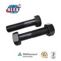 China Clip Bolt for Rail Fishplate, Railway Fasteners Hex Head Bolt on sale