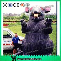 Quality 5m Heavy Duty PVC Inflatable Cartoon Characters Customized Rats For Parade for sale