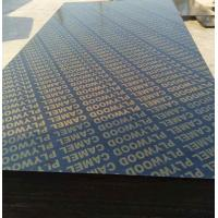 Quality 18mm finger joint plywood film faced plywood black film faced plywood for building construction for sale