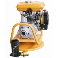 Quality EY20 5HP Gasoline Japan/Malaysia Type Concrete Vibrator for Concrete Tools for sale