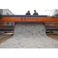 China 2018 NEW DESGIN GF-3.5 Tiger stone brick road laying machine price on sale