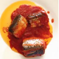 Quality CANNED DOTTED SARDINE PILCHARDS IN TOMATO SAUCE for sale