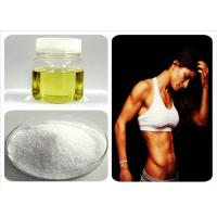 Buy cheap 99% Purity female hormone Ethynodiol diacetate for Treating Acne CAS 297-76-7 product