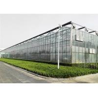 Quality Good Reliability Agricultural Glass Greenhouse 4mm / 5mm Glass Covering for sale