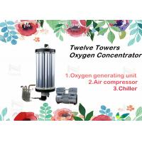 China Twelve Towers PSA Oxygen Concentrator Parts Gas Equipments Type Repair 3 - 15L on sale